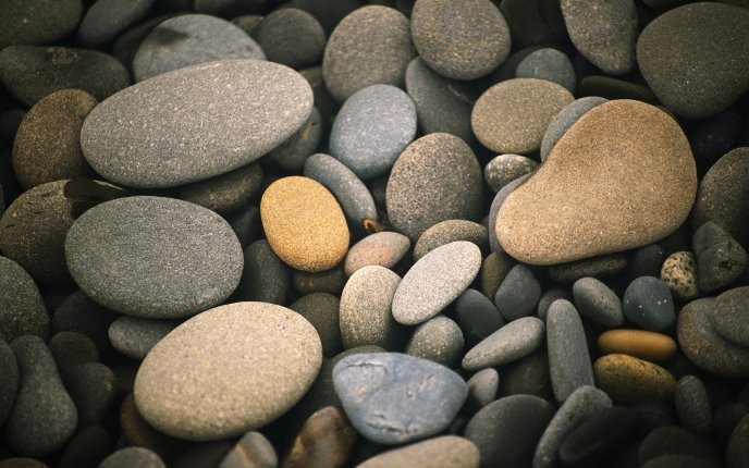 Various types of pebbles