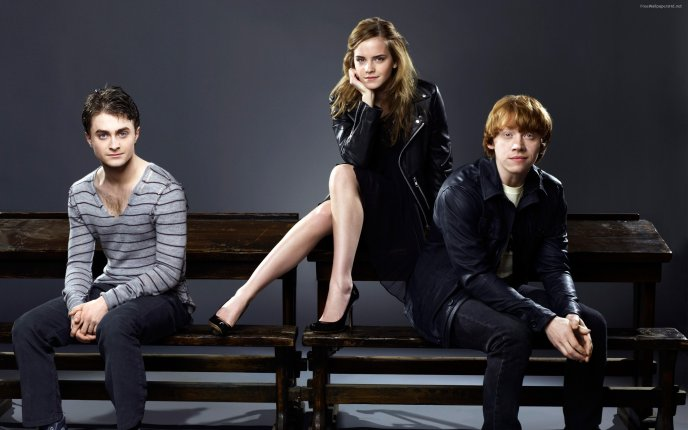 Harry Potter, Hermione Granger and Ron Weasley - Download High ...