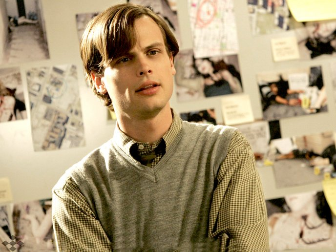 Matthew Gray Gubler A Young Actor Hd Wallpaper