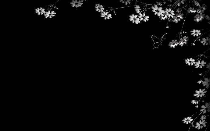 Black Desktop With Beautiful White Flowers