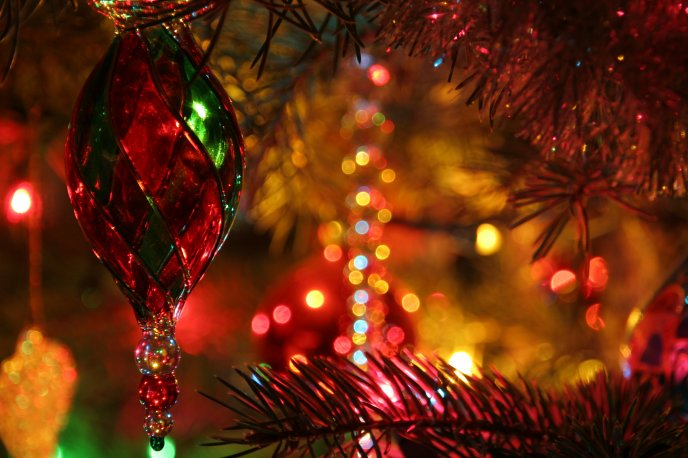 Red And Green Glass Ornament Hanging In Christmas Tree
