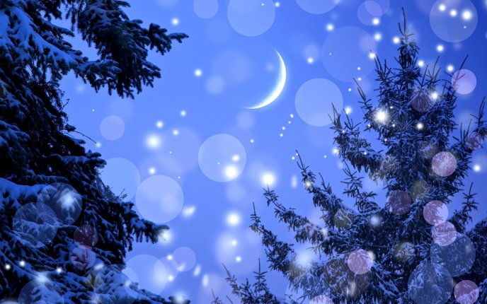A Beautiful Winter Evening Looked At The Moon Among Trees