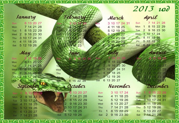 Download Wallpaper Green snake - calendar 2013 HD wallpaper