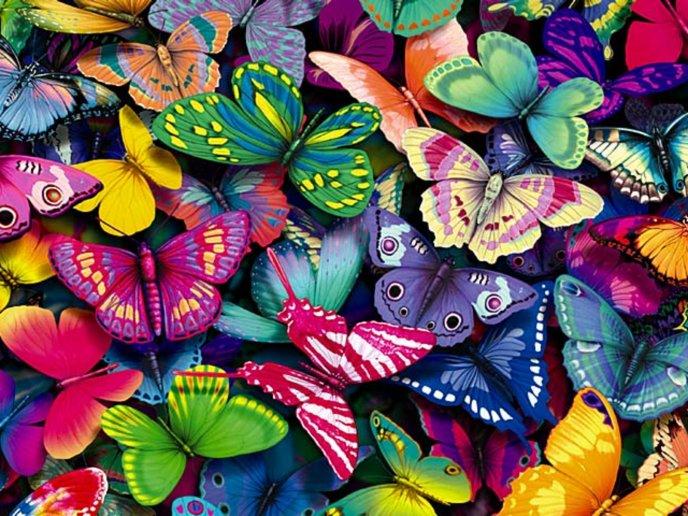 Lots Of Colorful Butterflies Hd Wallpaper