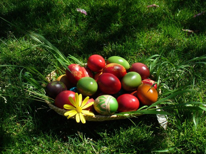 Straw basket filled with decorated eggs for Easter holiday