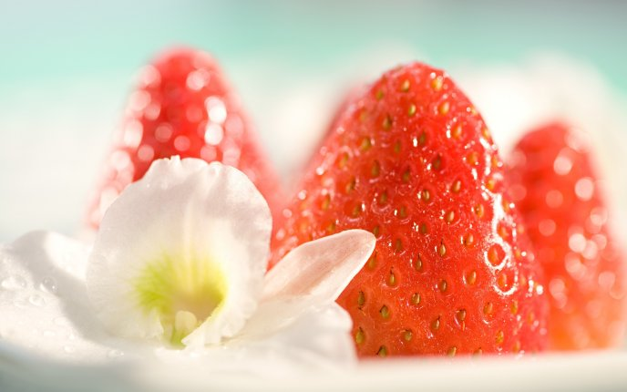 Season fruits - big red strawberries