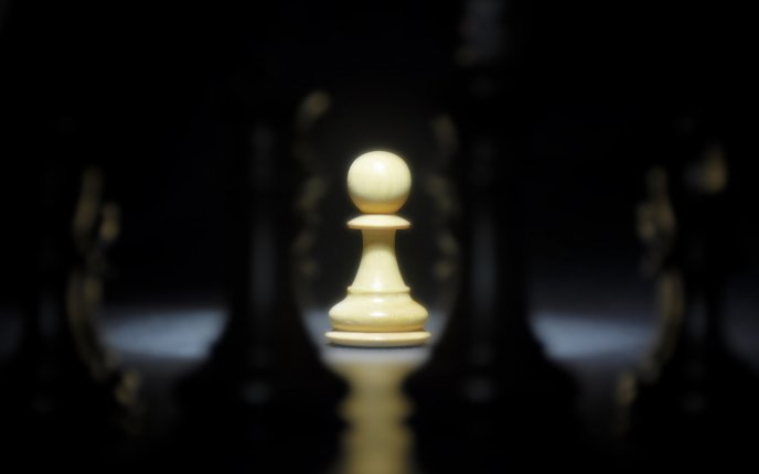 The Winner Pawn At Chess White Piece