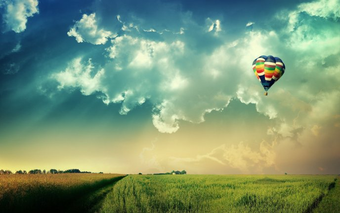 Colored hot air balloon over the green field