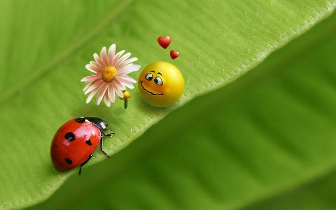 Love between smiley face and a little ladybug