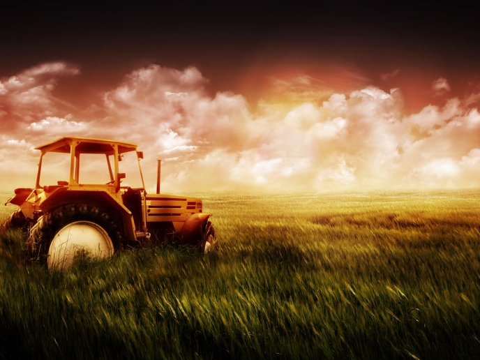 Tractor in the middle of the field - beautiful HD wallpaper