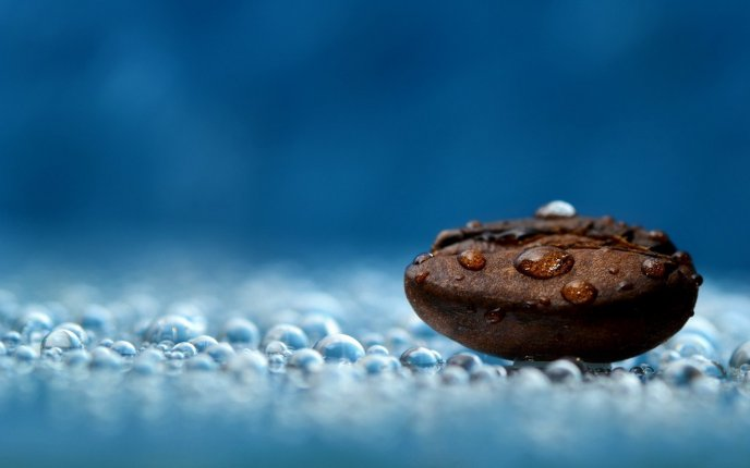 Big coffee bean - beautiful 3D macro wallpaper
