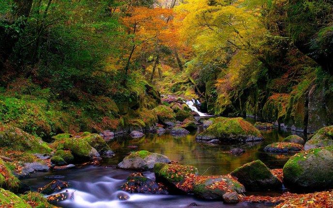 картинки природа на рабочий стол хорошее качество № 496713 бесплатно