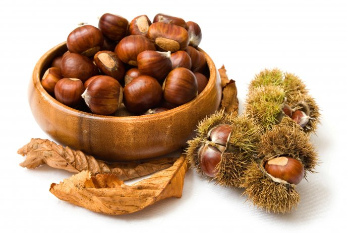 Autumn fruits vitamins - delicious chestnuts