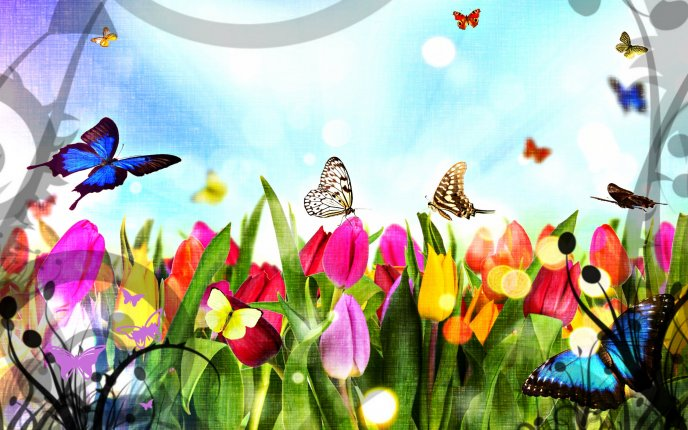 Flower Garden Drawing beautiful butterflies in the flower garden - hd wallpaper