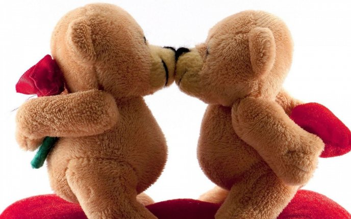 Two sweet fluffy bears - romantic moment of Valentines Day