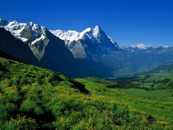 Wonderful nature landscape - beautiful mountain preview