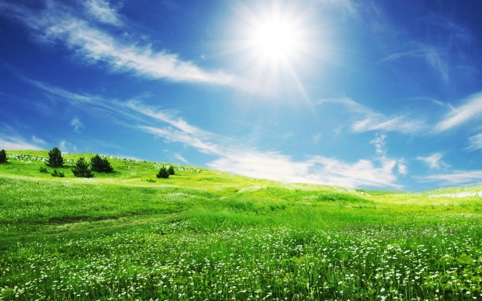 The smile of sun over the beautiful nature - HD wallpaper