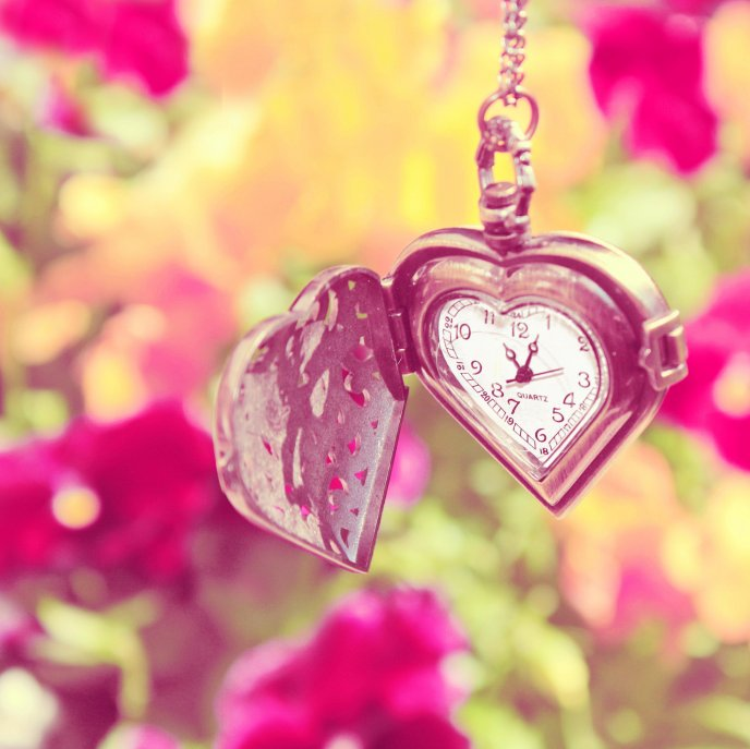 Lovely Watch Romantic Moments Of Spring