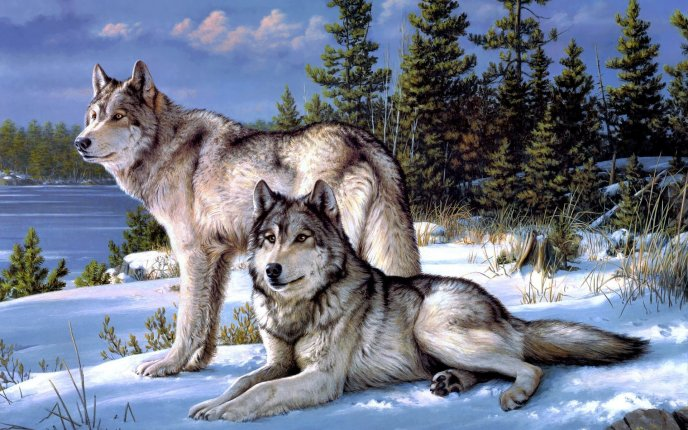 Wolfs in the snow - beautiful winter painting