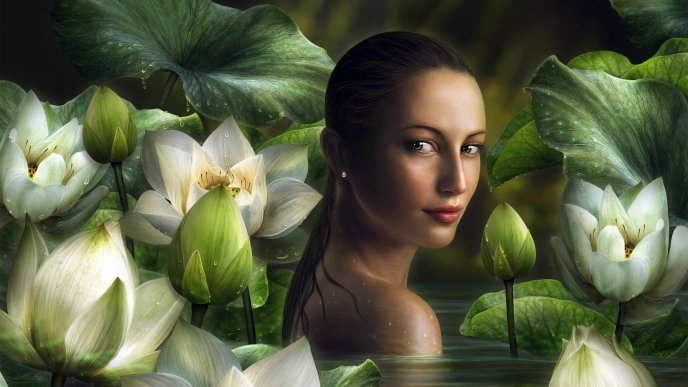 Download Wallpaper Girl in the water between white lilies - Fantasy wallpaper