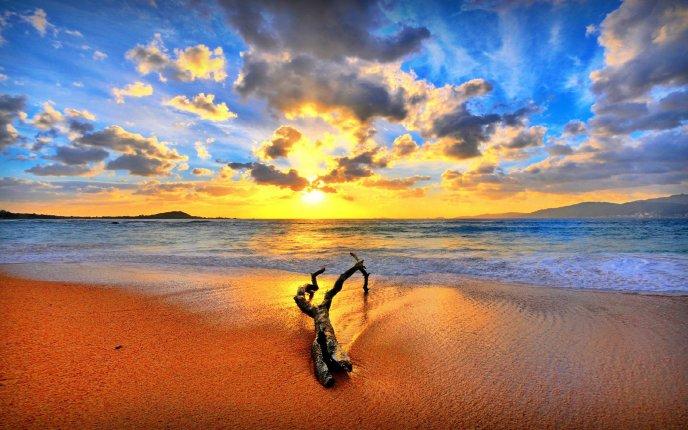 Wonderful sunset at the beach - HD wallpaper - photo#22