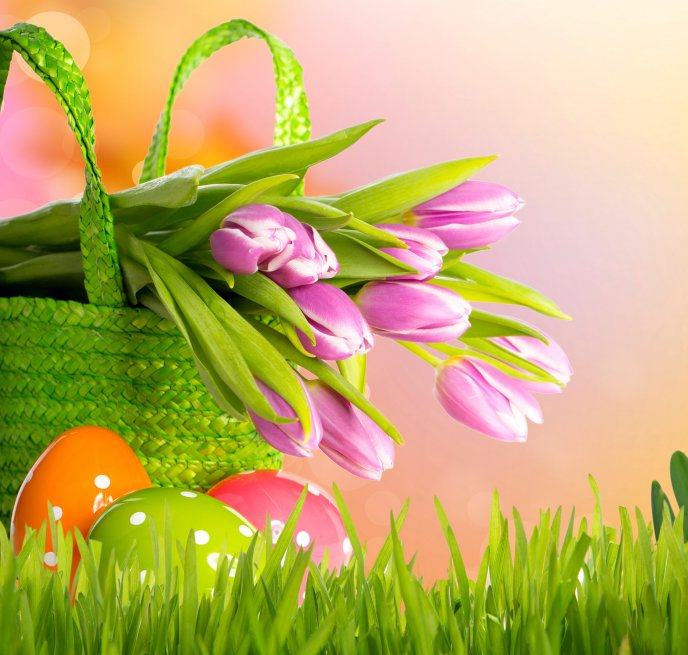 Bouquet of pink tulips and Easter eggs in the green grass