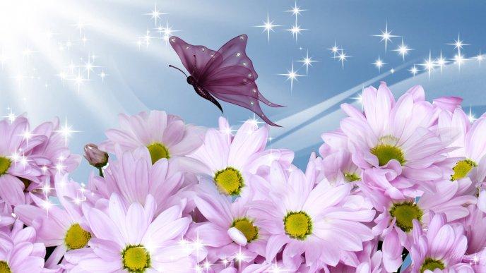 картинки на рабочий стол летние цветы красивые № 260316  скачать