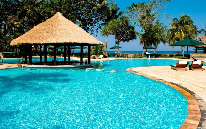 Wonderful resort for a perfect summer holiday-pool and palms