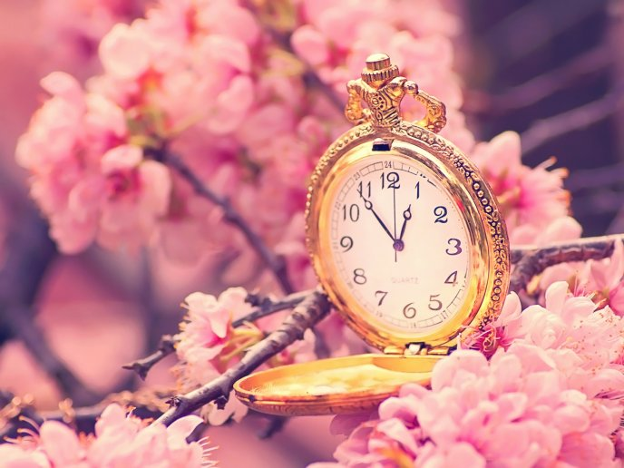Wonderful old clock in a blossom tree - HD wallpaper