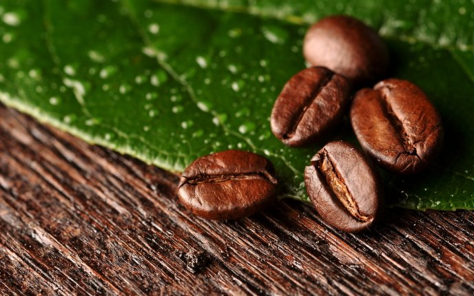 Download Wallpaper Brown color of coffee on the wood - Macro beans