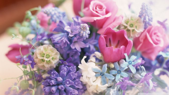 Download Wallpaper Colorful spring bouquet - Sweet perfume of flowers