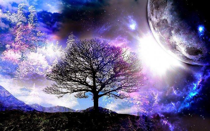 Fantasy World In The Night Magic Light