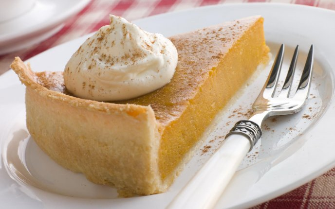 One big delicious slice of pumpkin pie with cinnamon
