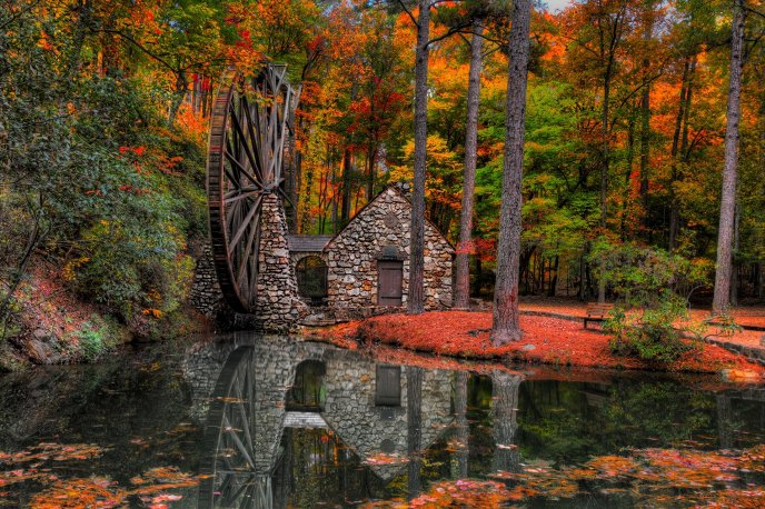 Olt water mill in the forest - Mirror in the lake