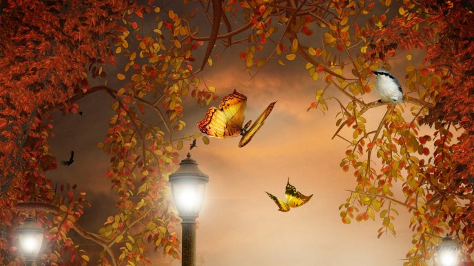 Download Wallpaper Butterflies in the night - Autumn forest