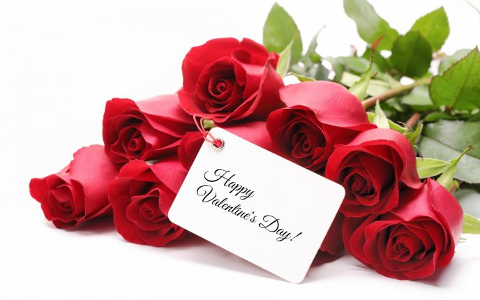 Happy Valentines Day celebrated with red roses as gift