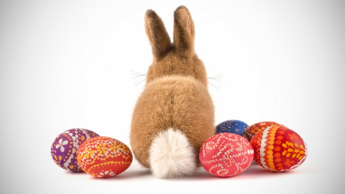 Brown fluffy rabbit and Easter eggs - Happy Spring Holiday