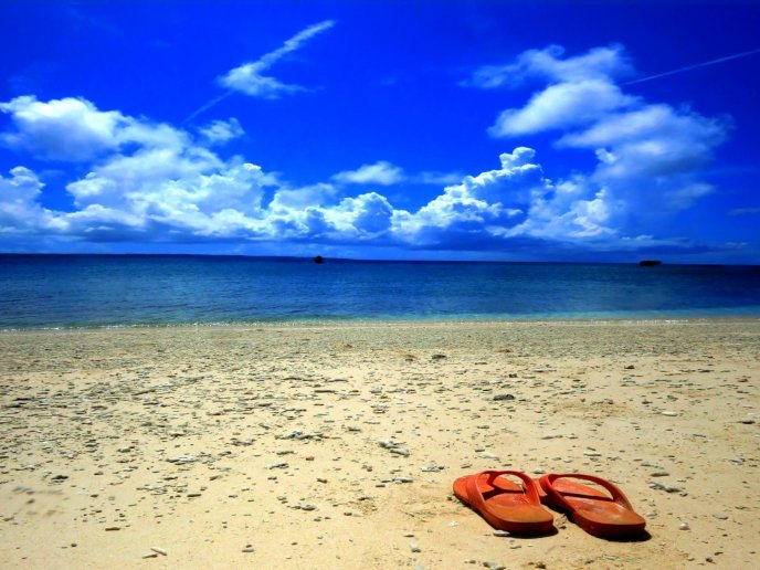 Let your flip flop on the sand and enjoy water - Summer time