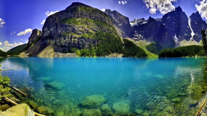 Moraine forest and wonderful blue lake water - HD wallpaper