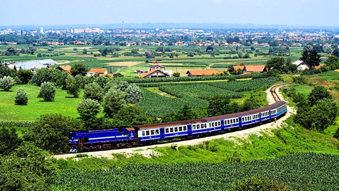 Big blue train and a wonderful nature landscape