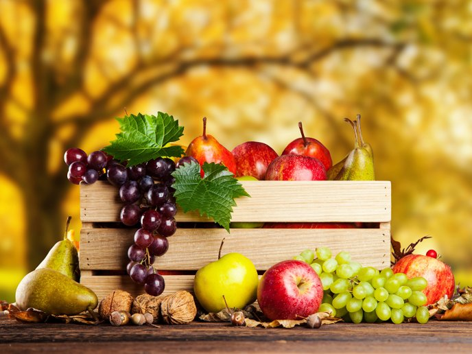 Basket full with autumn fruits - Grapes, nuts and apples