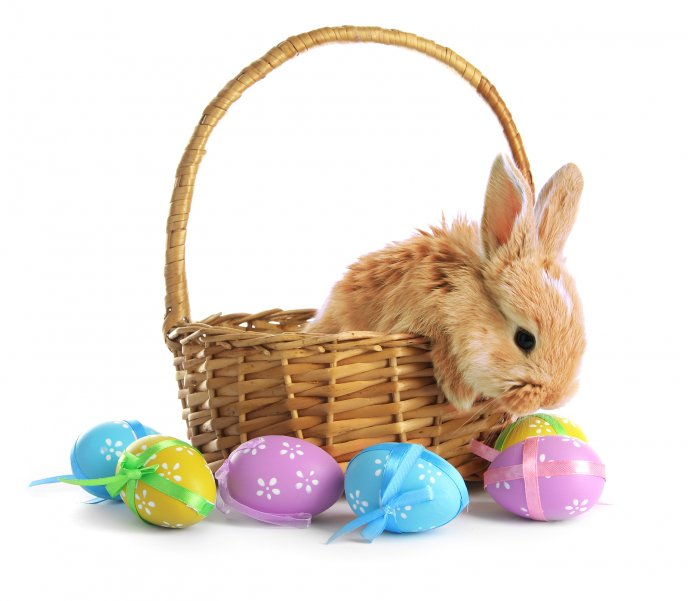 Brown fluffy Eater bunny basket and coloured eggs