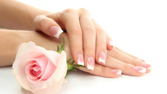 French nails and a beautiful pink rose - HD wallpaper