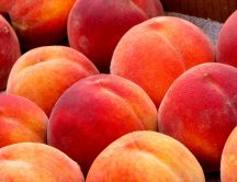 Big tasty peaches