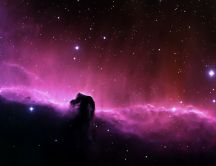 Beautiful horsehead nebula