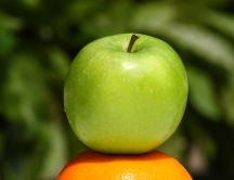 Perfect green apple