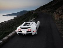 White Bugatti Veyron sport on the road