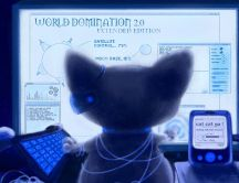 World domination - Intelligent cat