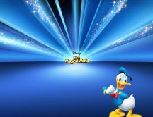 Donald Duck - Cartoons Disney