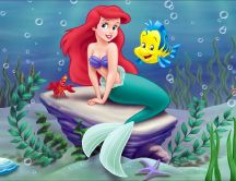 Ariel - little mermaid with her lovely fish